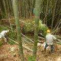 7月15日 (月) 竹林つくり2