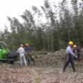 例会2 朝町個人宅の竹林整備2