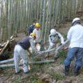 例会2 モデル竹林整備