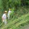 例会1 朝町個人宅の竹林整備1
